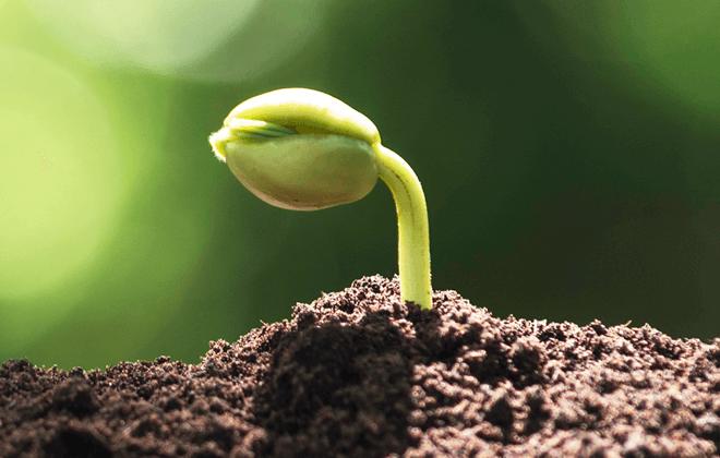 environmental agriculture portfolio